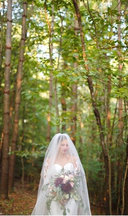Forest wedding in the red river gorge